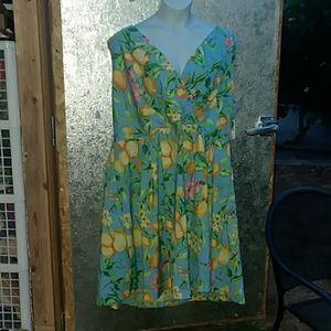 R & K Dress 24W BNWT